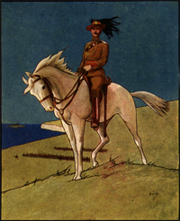 King Edwards Horse Postcard